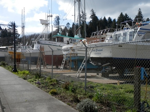 a glimpse of the boatyard garden, one block south, then on to work