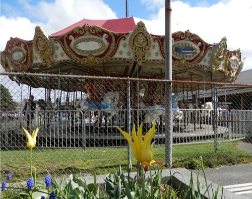 The carousel is now in operation for the tourist season.