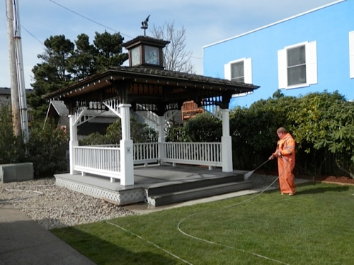 The Long Beach gazebo had gotten a new river rock surround by where we pruned rhodos a couple of weeks ago.