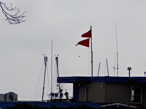 two storm flags at the Port of Ilwaco