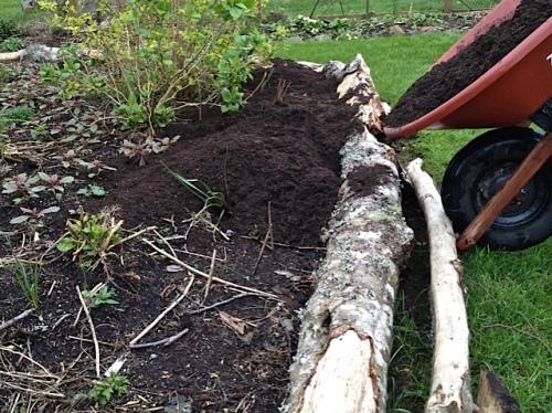 raising an edge by the bogsy wood