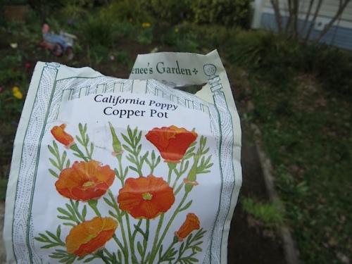 I felt a little verklempt while planting the seeds.