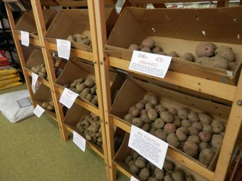 a large selection of potato varieties