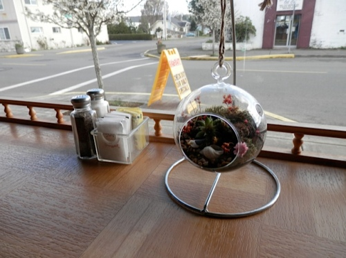 a dining counter with terrarium and view