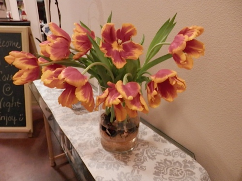 in the foyer, tulips in a vase, bulbs and all