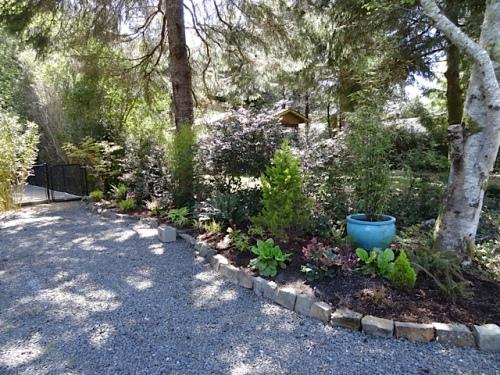 the driveway shade garden