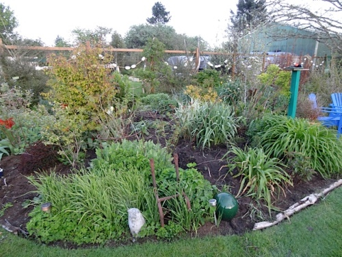 a bit of comforting admiration of yesterday's weeded area