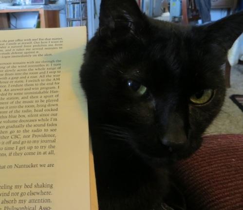 Calvin helped me read.