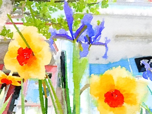 This called for a Waterlogue.