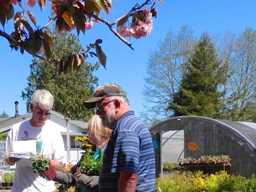 more plant discussion with Fred joining in