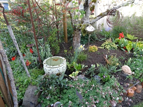 Allan had put out his mother's ornamental pot, that we use as a water feature.