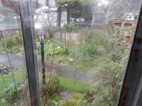 rain from the east window