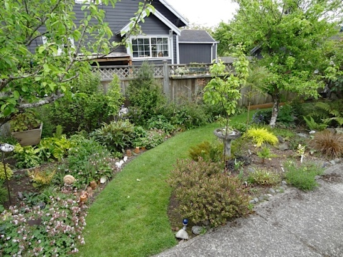 I wished that my garden areas were as well weeded as Allan's.