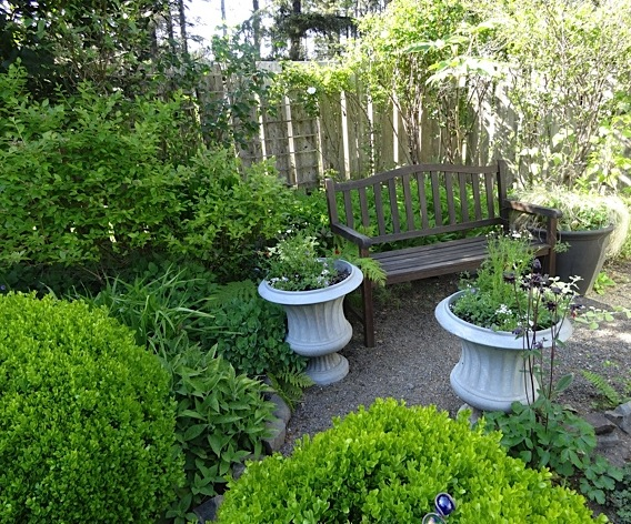 sit spot in the fenced garden