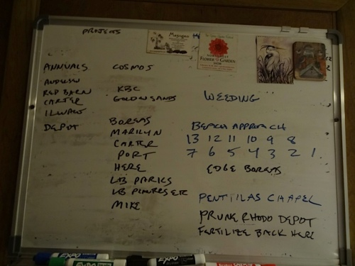 the work board, with a few items erased