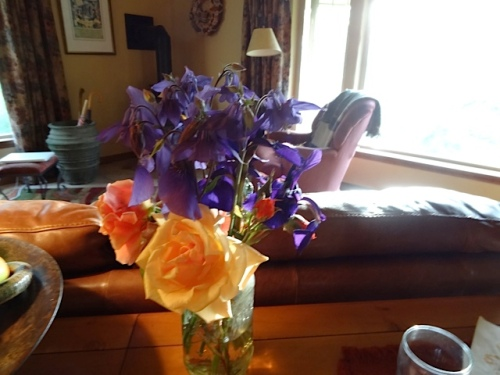 I had brought Ann a bouquet.  You might recognize that I swiped the roses from Nora's peachy rosebush; I did not have any as pretty, yet.