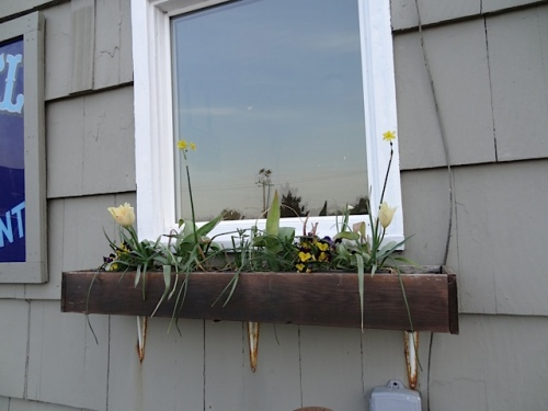 It's almost time to redo the four window boxes with summer annuals.