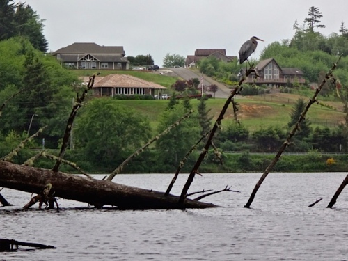 the built-up side of the lake revealed