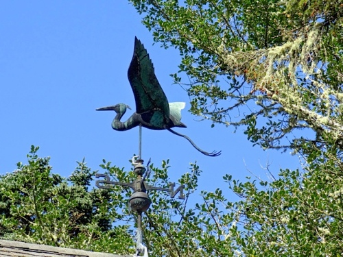 on the roof:  Allan's photo, a flying bird for Mr. Tootlepedal