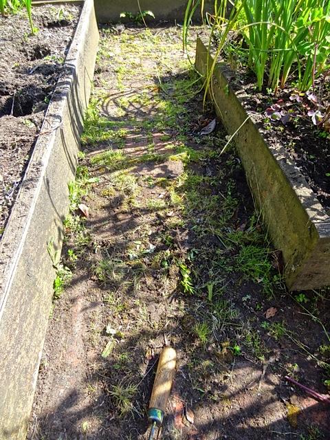 Allan tackled the messy brick paths.  (Allan's photo)