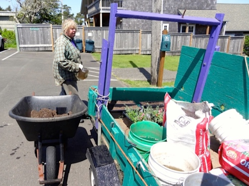 Allan's photo: a wheelbarrow with a bag of potting soil dumped in it.