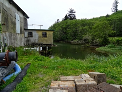 the southeast corner of the boatyard...No water for watering.