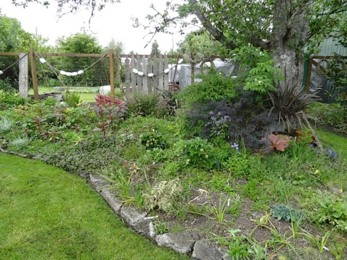 or this east side shade bed that I truly look forward to weeding again.