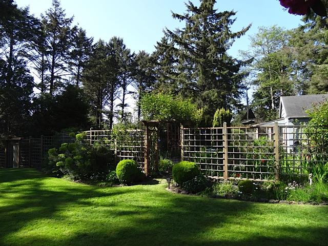 the deer fence