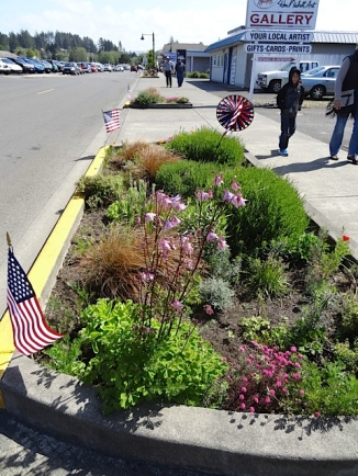 one of our curbside gardens on Howerton Avenue