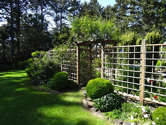 south side of fenced garden