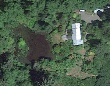 The pond is a glorious feature; If I could have any property on the Peninsula, I'd choose this one.