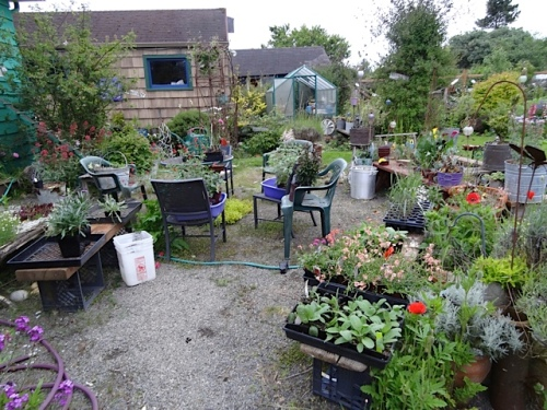 Patio still laden with the last of work Annuals (and Perennials) Planting Time
