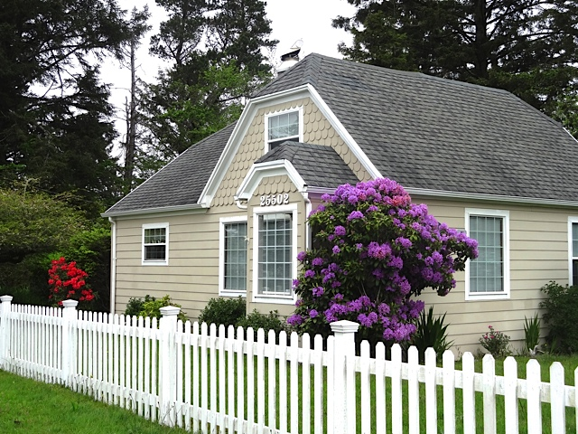 This house and rhododendron caught my eye.