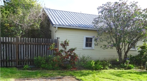 also weeded shade garden against neighbour's garage