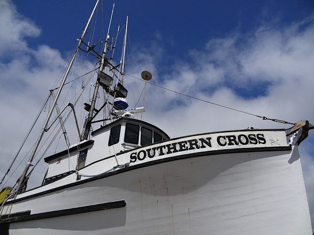 the Southern Cross looming overhead