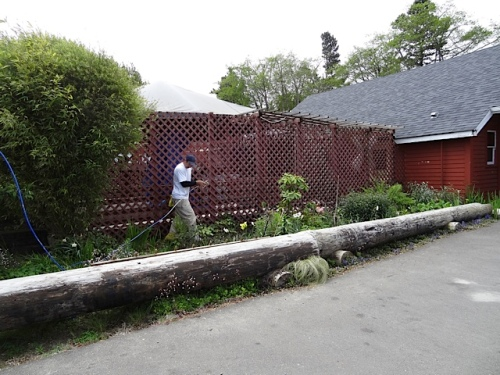 The other painter, here about to pressure wash, was being very careful about the garden.