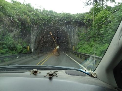 tunnel2