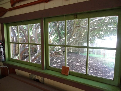west window of sun porch with view of Big Mama