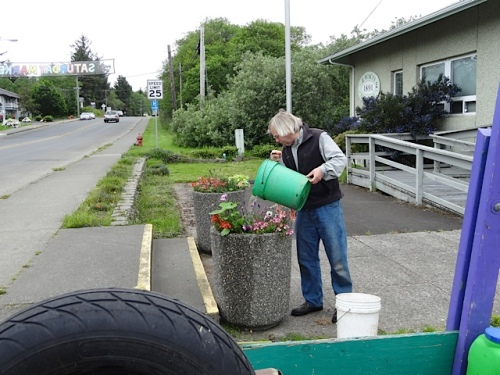 bucket watering the city hall planters