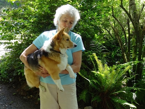 Allan's photo: Beth and the shy corgi