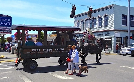 The horse wagon went by.  (Allan's photo)