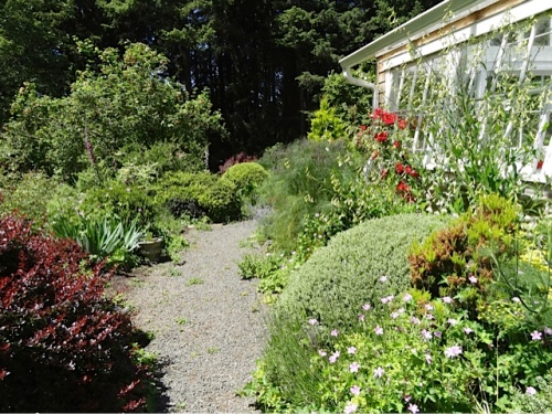 path along the greenhouse, south side
