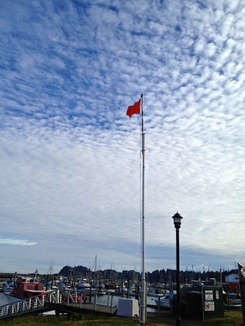 Allan's photo: the port wind warning flag was up, as it has been often this month.