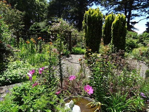 view over the birdbath in the fenced garden