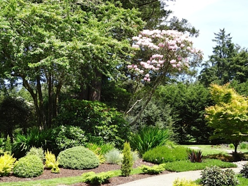 note the rhododendron still blooming....one of the originals to the site