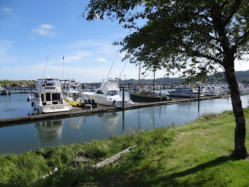 The marina: The weather had at last turned to blue skies.