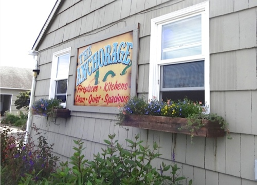 These window boxes were all shipshape.  All had responded well to last week's fertilizing.
