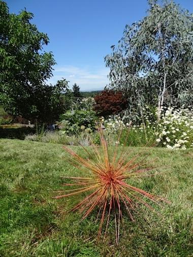 spraypainted Allium schubertii tumbleweeds