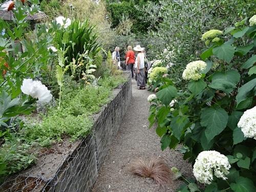 entering the back garden