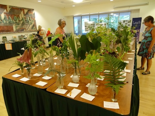 botanical display table
